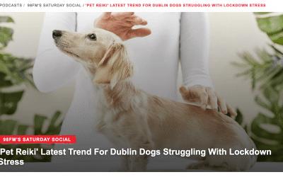 98FM Saturday Social: 'Pet Reiki' Latest Trend For Dublin Dogs Struggling With Lockdown Stress